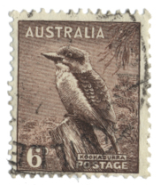 1BirdAustralia